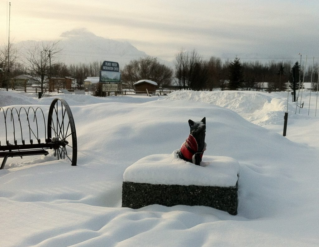 A statue of Balto the sled dog in Palmer, Alaska in 2011.